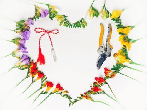 Surpriza de Ziua Mamei - kit floral